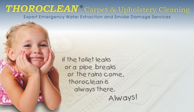 water and water damage services